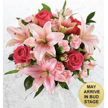 FK1034 You had me at Pink - Fresh Cut Flowers (no vase)