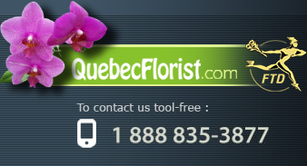 Flower delivery | Same day delivery | Canada & USA
